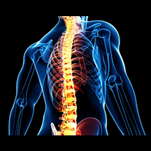 Spine Surgery and Treatment